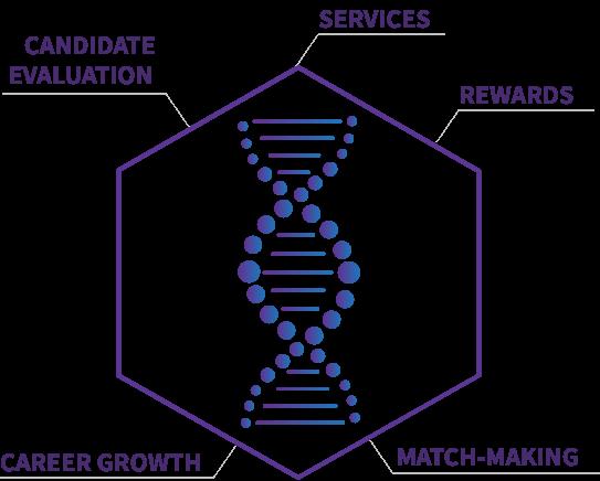 ABL DNA